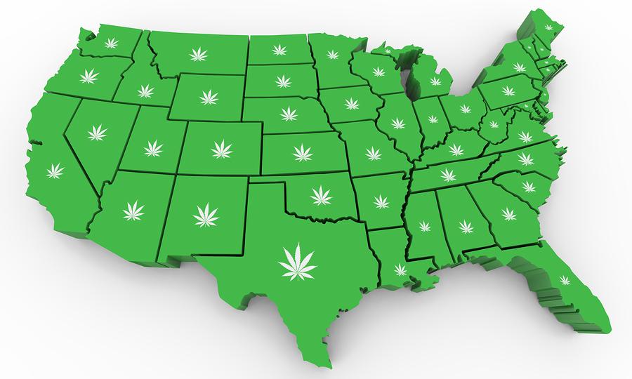 support legalization of marijuana