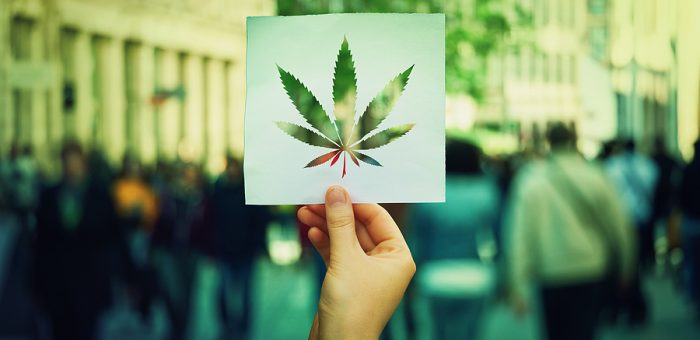 Top 3 Cannabis Social Networks for Business and Pleasure